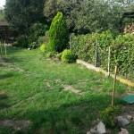 podluzny_ogrod_przebudowa_wytyczanie_rabat