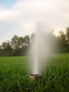 Systemy nawadniania - zraszacz