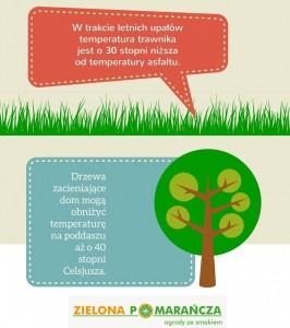 Infografika Ogrody Trawniki Drzewa