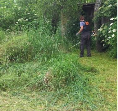 Sprzątanie ogrodów we Wrocławiu - porządki, karczowanie, wykaszanie